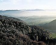 Wildlife Park Zürich-Sihlwald