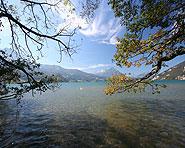 The Weissenau near Interlaken
