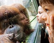 Zoo di Basilea