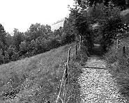 Goldauer Rigiweg (Goldau–Rigi Kulm)