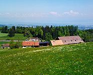 Hof Hohenwiesen