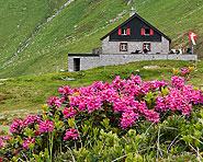 Vermigel-Hütte