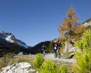 Nationalpark Bike-Tour