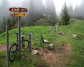 Die Panorama Bike: eine Traumstrecke