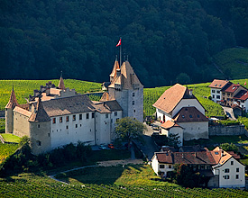 Castle of Aigle
