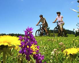Bois et Combes de St-Cergue Bike