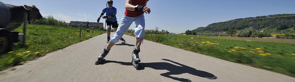 901 Country Skate