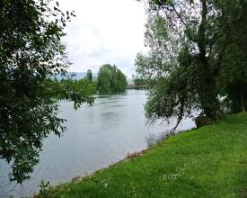 WL_486_00_73_Uferlandschaft.JPG
