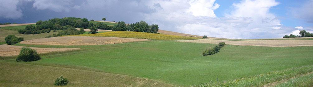 593 Nordspitze Panoramaweg